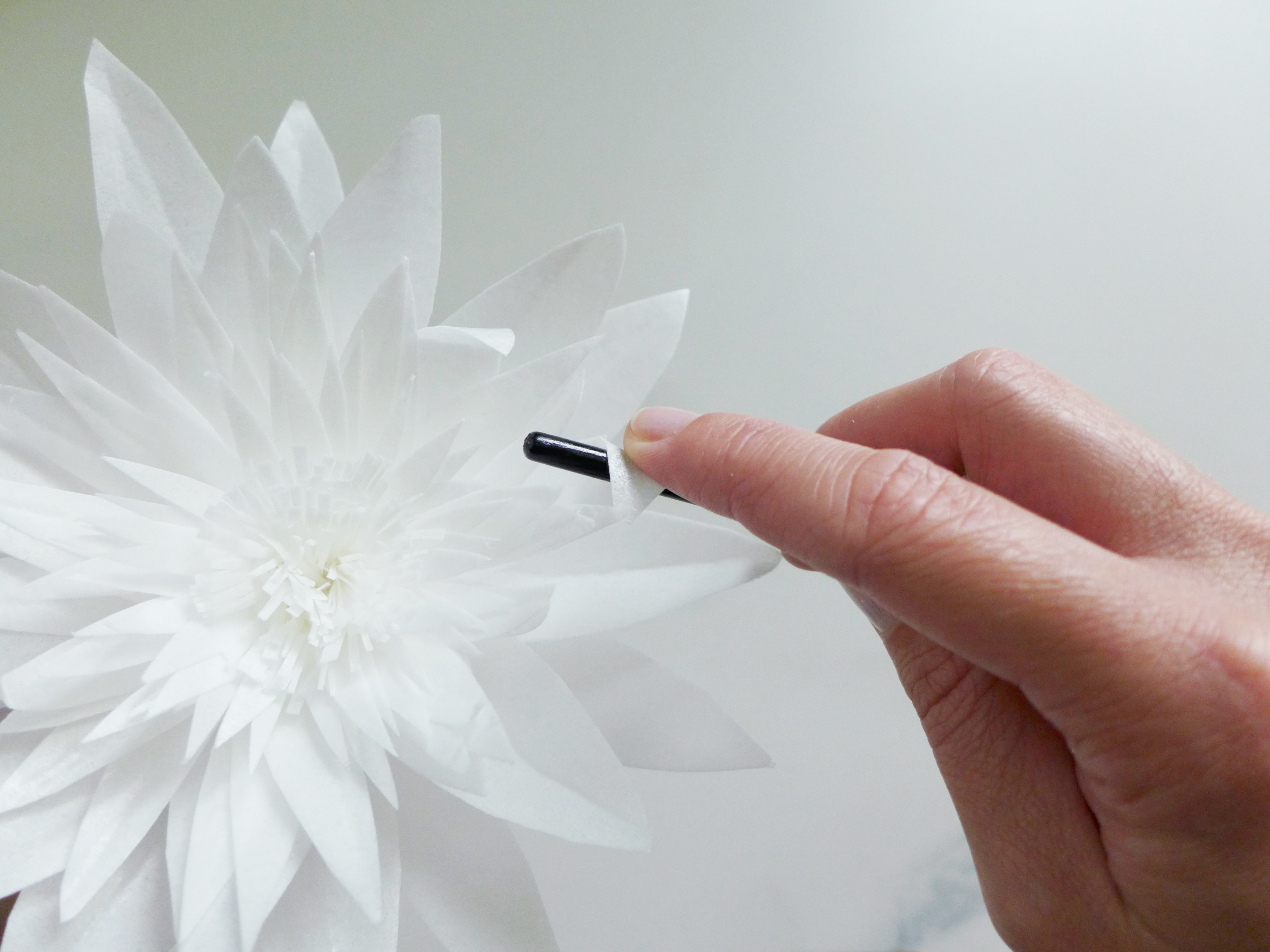 New wafer paper flower tutorial and future goodies olofson design knowledge of how to work with wafer paper and construct flowers with a bit of experimentation you can go on to create your own variations and styles mightylinksfo