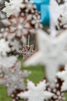 Gingerbread snowflake cookies copyright Helen Jermyn