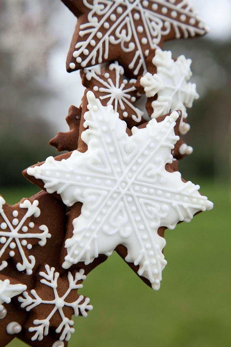 Gingerbread snowflake cookie copyright Helen Jermyn